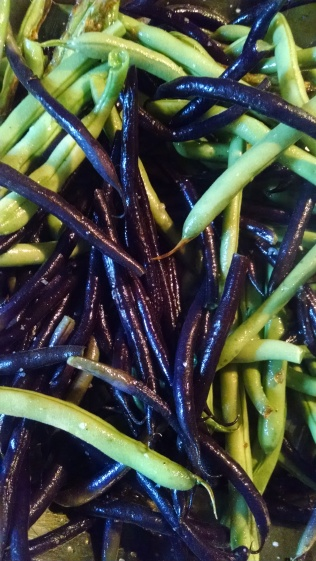 Purple haricot vert and plain old green beans