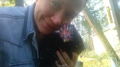 Bob the hen