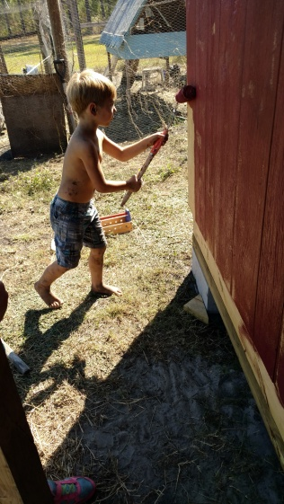 Puck painting the coop